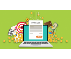 Best Payroll Software for India |Accent Consulting HR & Payroll Software