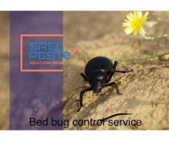 Best Pre Construction Anti Termite Control by Sreepesto Bachupally