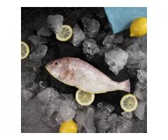 Order Fresh Seafood Fish Online in Mumbai