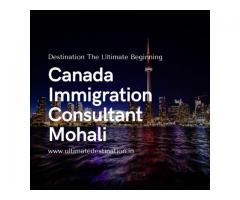 Cheap Canada Immigration Consultants in Mohali