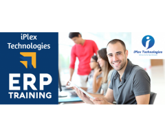 iPlex ERP Training - BE, B-Tech, MCA, Engineering & Non IT Graduates