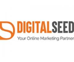 Digital Marketing Company in Pune | Website Design Company in Pune | Digitalseed Agency, India