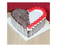 Cake Online Order in Jaipur | Cake For any Occasion | Same Day | Free Delivery |