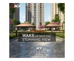 3 BHK Flats in Noida Extension - Ace Divino