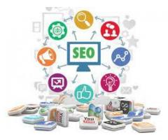 Top Rated SEO Agency in Delhi/NCR | Fast SEO Ranking Results‎