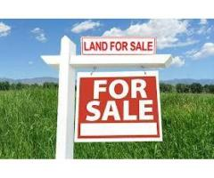 Open Land with LRS Full paid for Sale ,East Facing 100square yards at Risala Bazar
