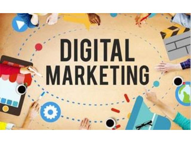 Digital Markitors – A Reliable Digital Marketing Agency in Delhi Offers Result-Driven Solutions