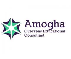 Abroad Study Consultancy - Amogha