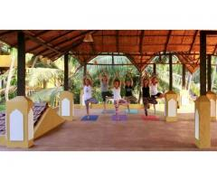 Best Yoga Retreat Center Goa