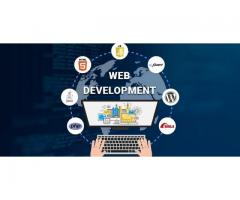 Largest Website Development Company in Jaipur