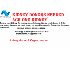 Donate your kidney  for money urgently
