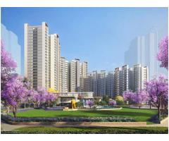 Shapoorji Pallonji Joyville homes Gurgaon Sector 102