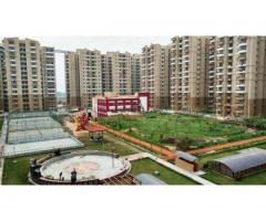 Buy Ultra Luxurious Apartments in Noida Extension