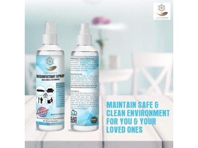 EarthyBoon Disinfectant Spray