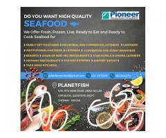 Sea Food Fresh Live Frozen for Ready to cook