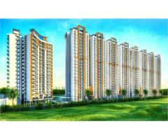 Book Luxury Flats in Noida Extension ACE Group Divino