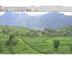 Tea Garden Software, Tea Garden Management system by  EBS Software Solution.