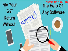 Without help of any software fill GST return