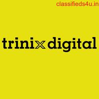 Digital Marketing Agency in Calicut, Kerala-Trinix Digital