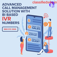 Minavo Telecom Networks ,One of The top IVR Service Providers in Noida, India