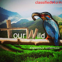 Travel agency in Coimbatore, tours and travels in Coimbatore |  Tourwild