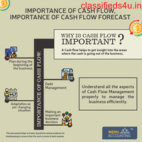 What makes Cash Flow very important for any business