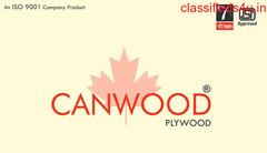 Canwood Shuttering Plywood Manufacturer in Yamuna Nagar