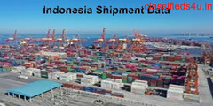 Indonesia Shipment Data: For Monitoring Indonesia's Shipment Activities
