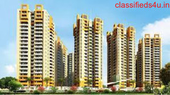Rajhans Residency Noida price list and gallery