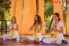 Yoga retreat in India - Peace Yoga Retreat