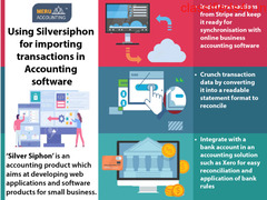 Using Silversiphon for importing transactions in Accounting software