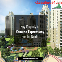 Real Estate Services in Greater Noida