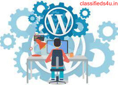 Grow your website with a Leading WordPress Developer In North Carolina, USA