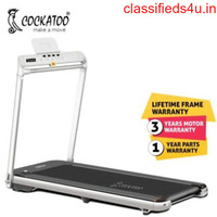 Buy Treadmill Online at the Best Price