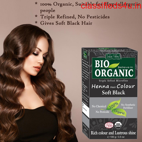 Herbal Henna Hair Pack at Best Price in India