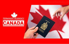 Want to know the basics requirements for Canada PR Visa.