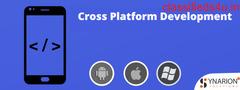How the Cross Platform Development Industry works.