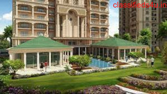 Residencial flat in Capital Athena Noida west.