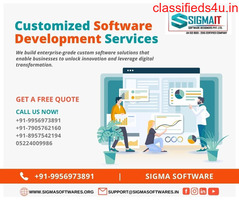 Customized Software Development Services In India