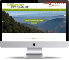 Affordable Software Development Solutions | iWebLogix