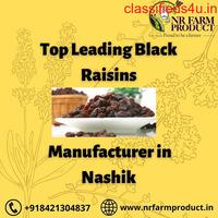 Top Leading Black Raisins Manufacturer in Nashik