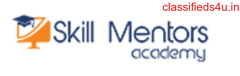Skill Mentors Academy – Our Certified Trainers Team