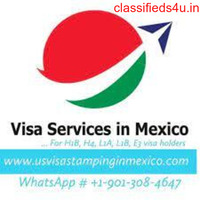 H1B Visa Stamping in Mexico | US Visa Fee Payment | US Visa Application Fee Payment